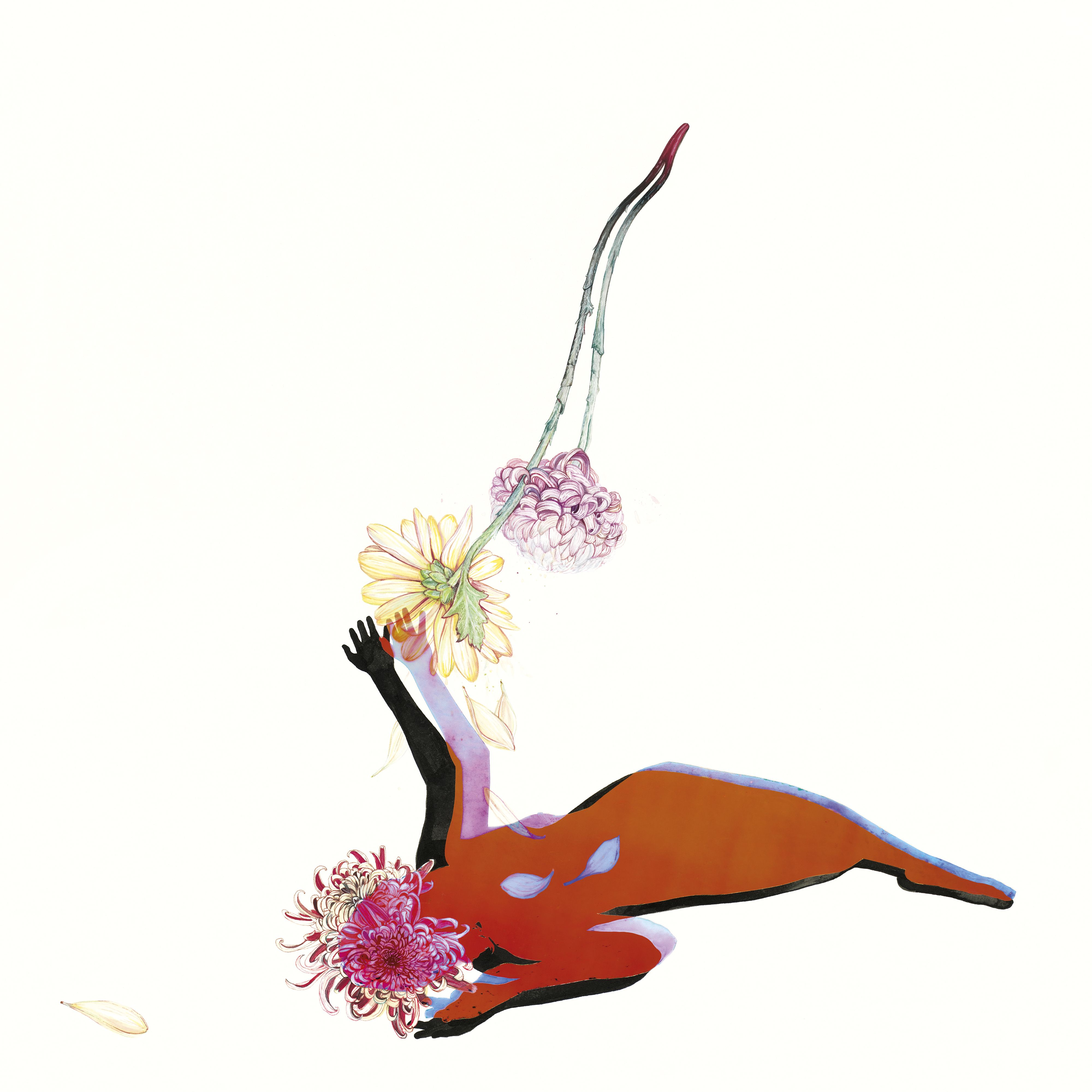 Future Islands - The Far Field album cover