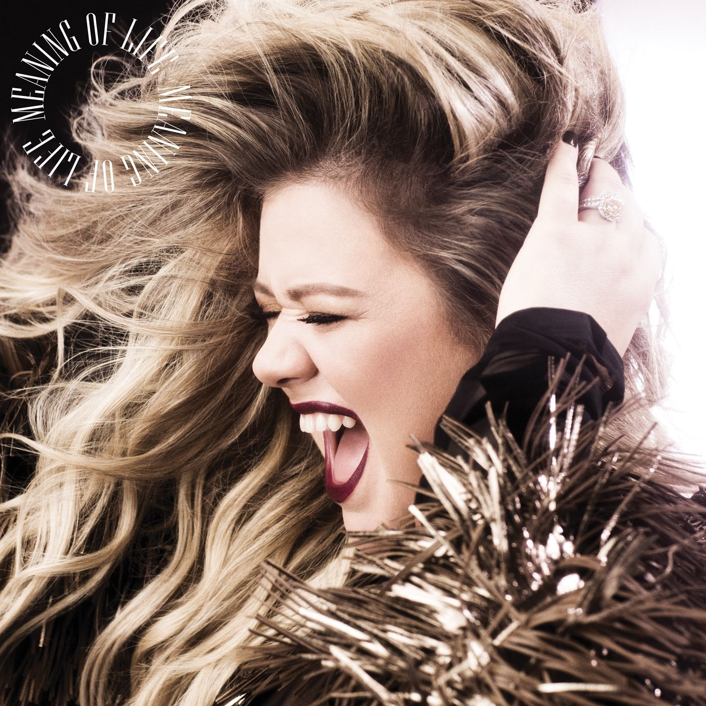 Kelly Clarkson - Meaning Of Life album cover