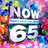 Now 65 by  Various Artists