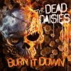 Burn It Down by  The Dead Daisies