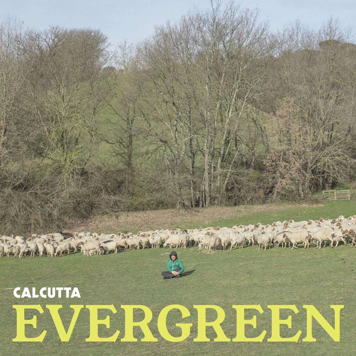 Calcutta - Evergreen album cover