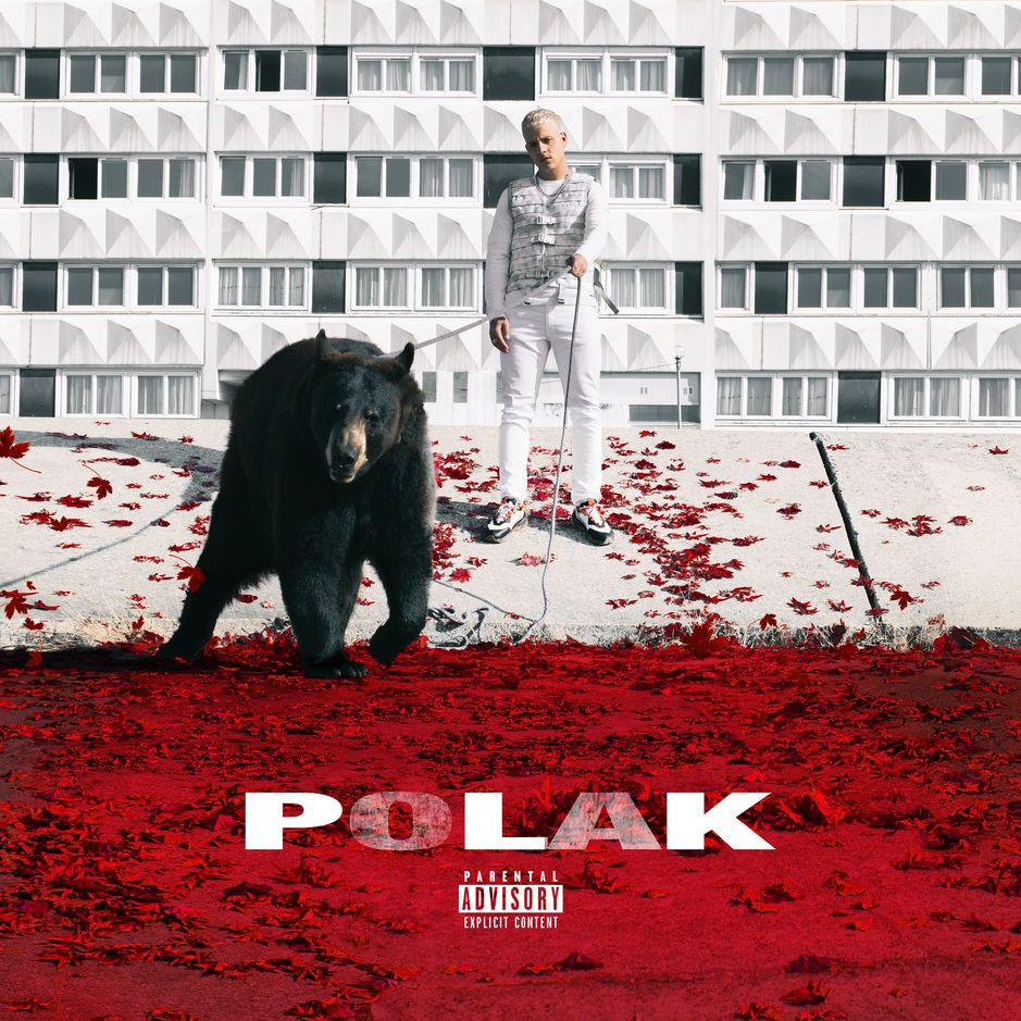Plk - Polak album cover