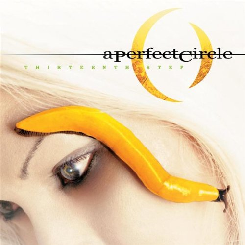 A Perfect Circle - Thirteenth Step album cover