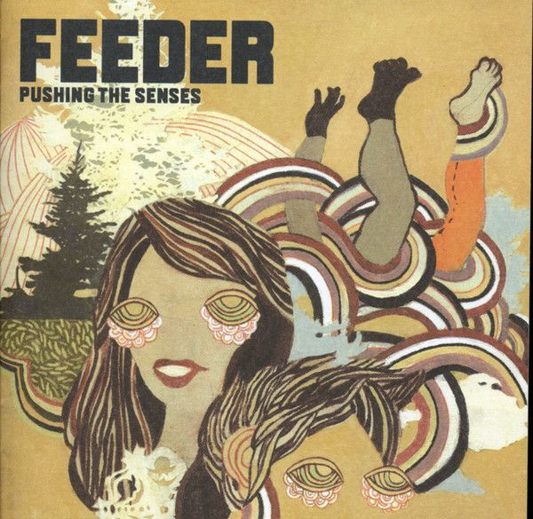 Feeder - Pushing The Senses album cover