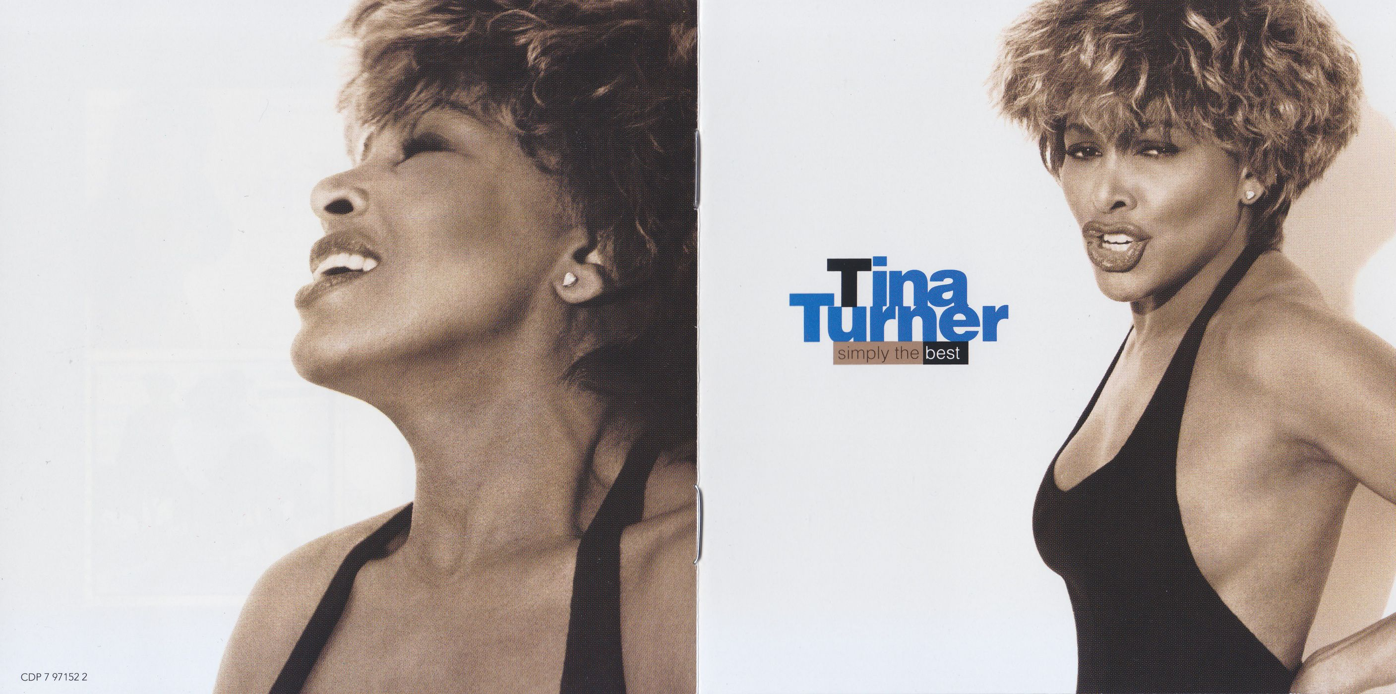 Tina Turner - Simply The Best album cover