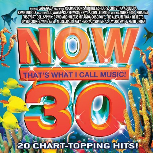Various Artists - Now 30 album cover