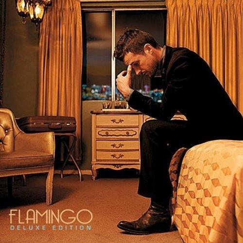 Brandon Flowers - Flamingo album cover