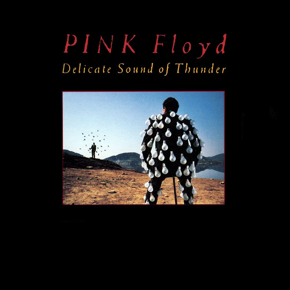 Pink Floyd - Delicate Sound Of Thunder album cover