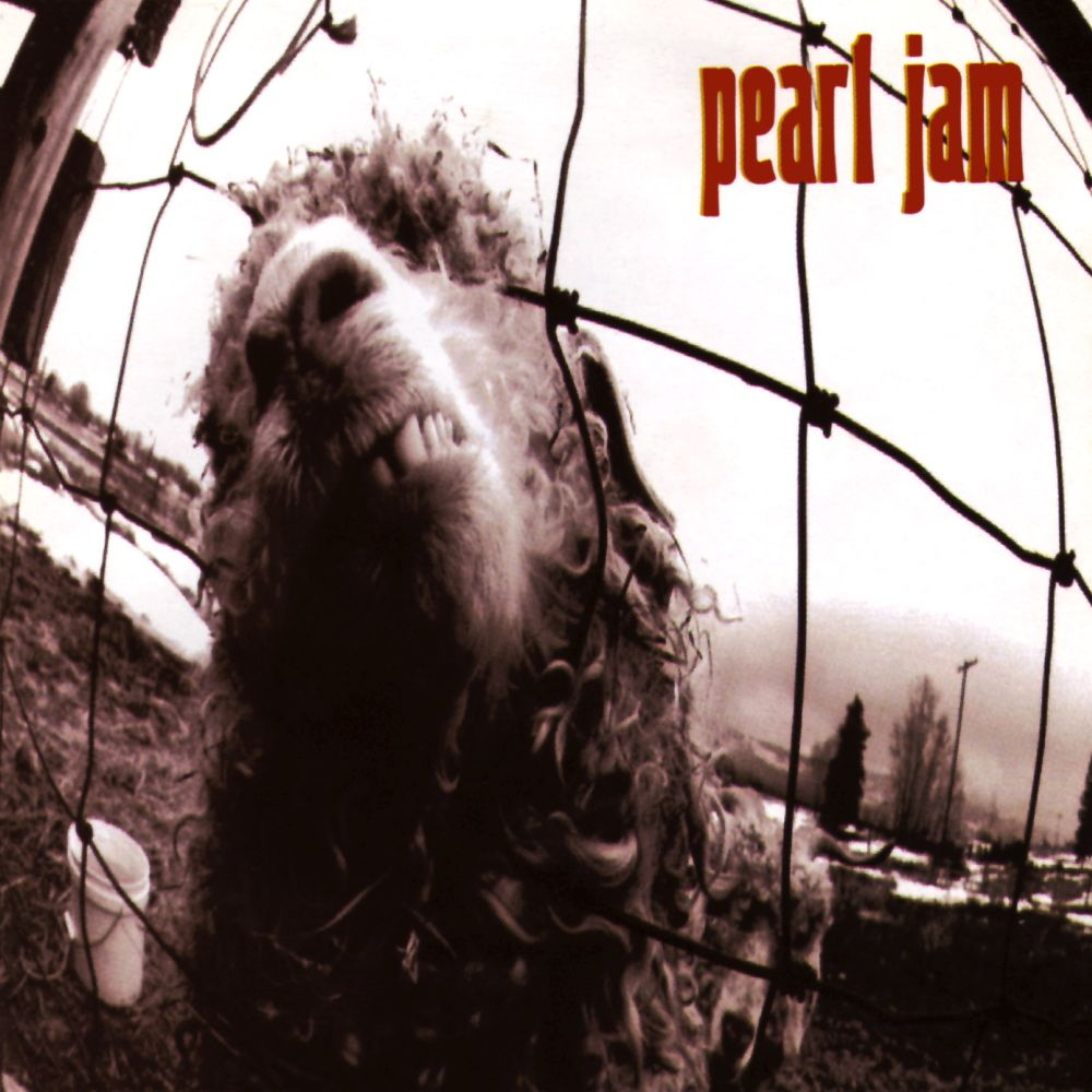 Pearl Jam - Vs. album cover