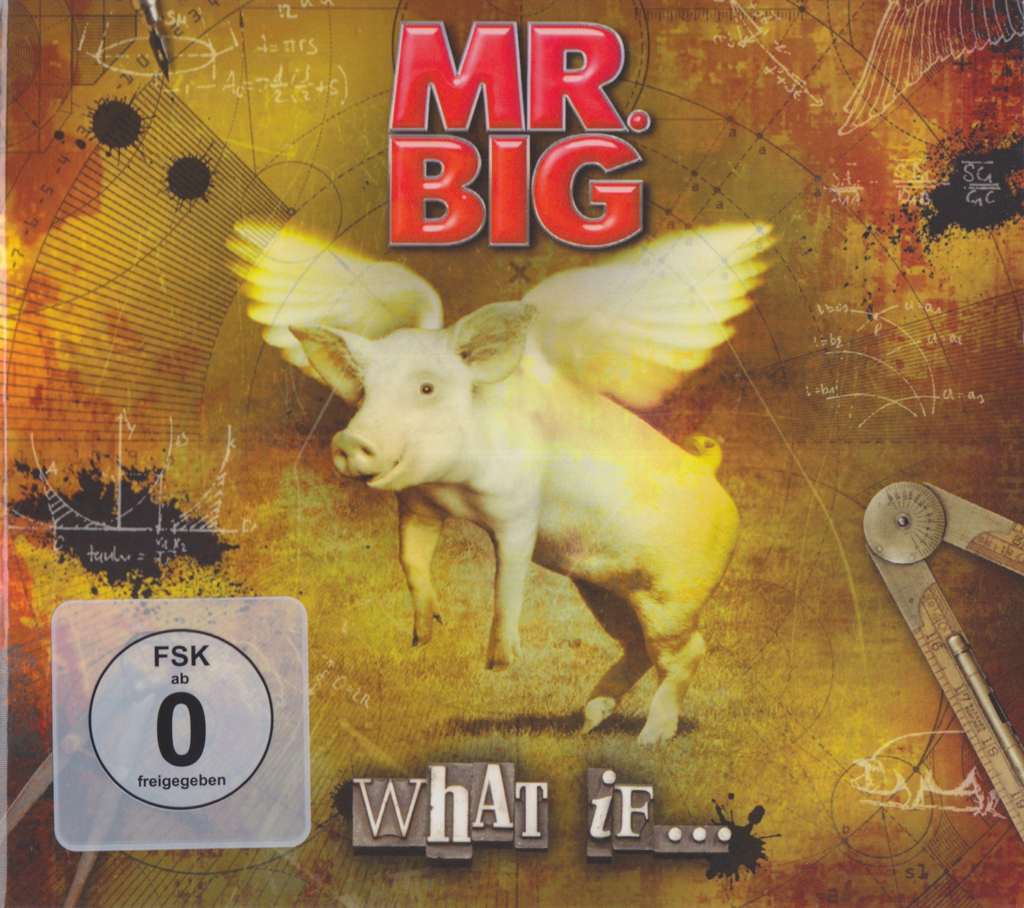 Mr. Big - What If... album cover