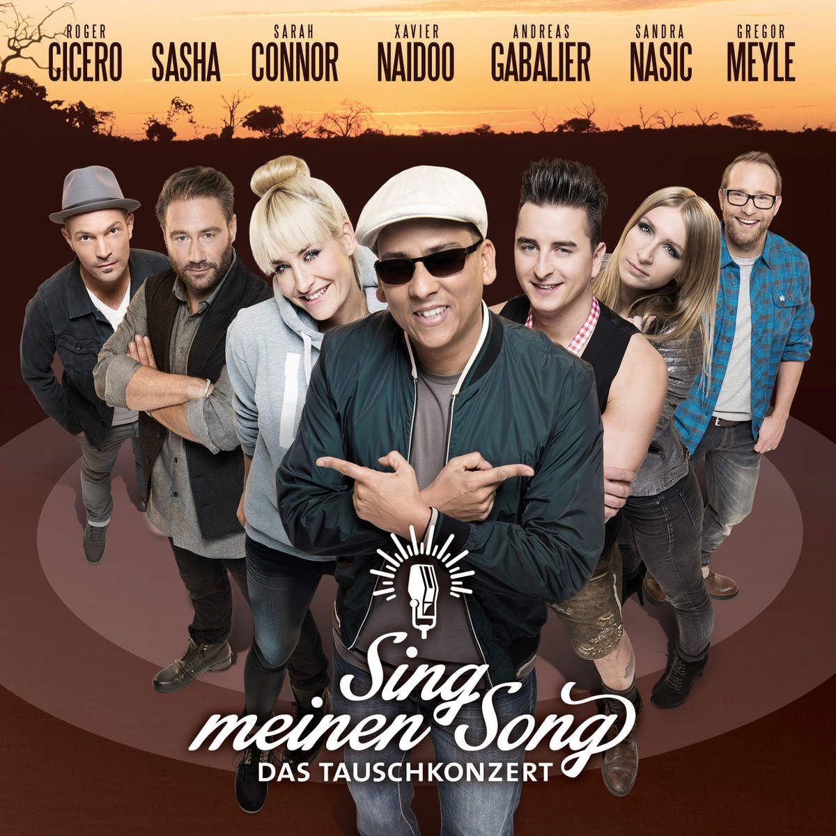 Various Artists - Sing Meinen Song - Das Tauschkonzert album cover