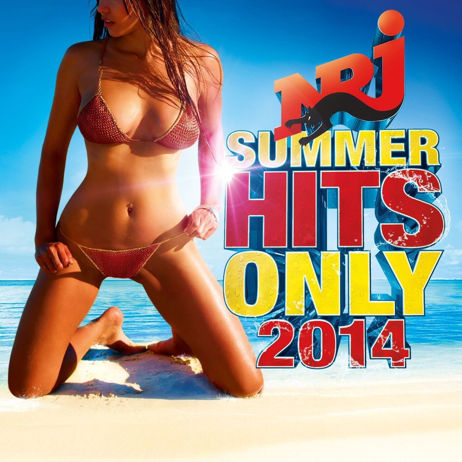 Various Artists - Nrj Summer Hits Only 2014 album cover