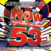 Now 53 by  Various Artists
